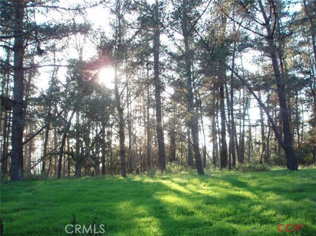 6785 Cambria Pines Road, Cambria CA: http://media.crmls.org/medias/c6623e55-56f6-476a-ba52-d59ba067260c.jpg
