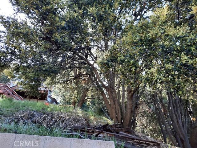 25105 Jewel Drive, Crestline CA: http://media.crmls.org/medias/c6f75010-f880-4453-83f7-f741dfc07ac0.jpg