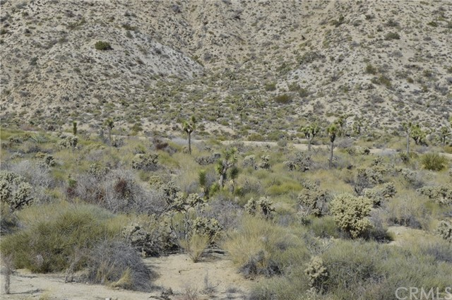 7400 Fairway Drive, Yucca Valley CA: http://media.crmls.org/medias/c6f81553-56b4-416a-a827-af4721667381.jpg