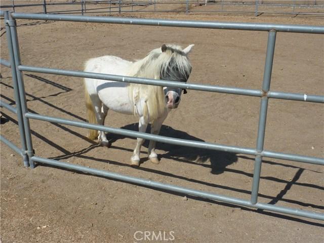 20795 Santa Rosa Mine Road, Perris CA: http://media.crmls.org/medias/c7230c23-59e5-4afb-9d06-a21b7ee6bb32.jpg