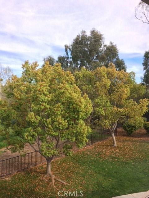 4 Morning Star, Irvine, CA 92603 Photo 43