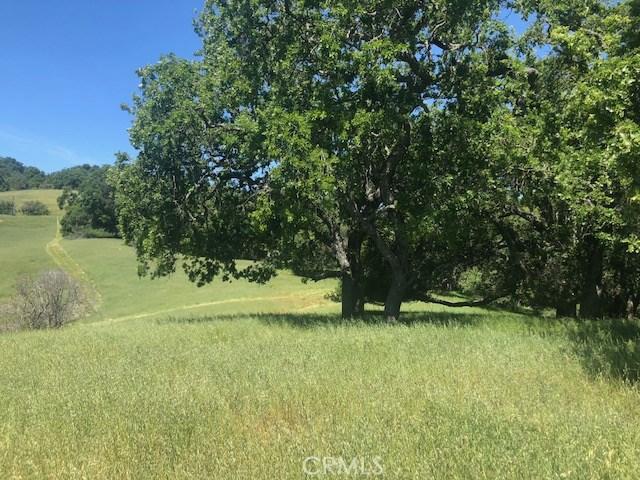 8225 Vineyard Drive, Paso Robles CA: http://media.crmls.org/medias/c7777eaa-60f1-4d40-8e07-d9fff6ac0518.jpg