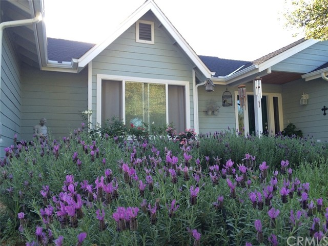Single Family Home for Sale at 42149 Lone Olive Lane Ahwahnee, California 93601 United States