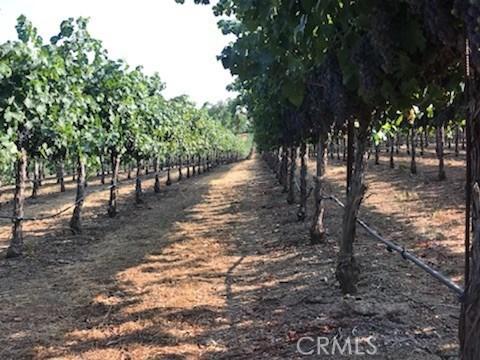 3360 Merritt Road, Kelseyville CA: http://media.crmls.org/medias/c854f11f-7961-4831-a83c-057607cc5f1c.jpg