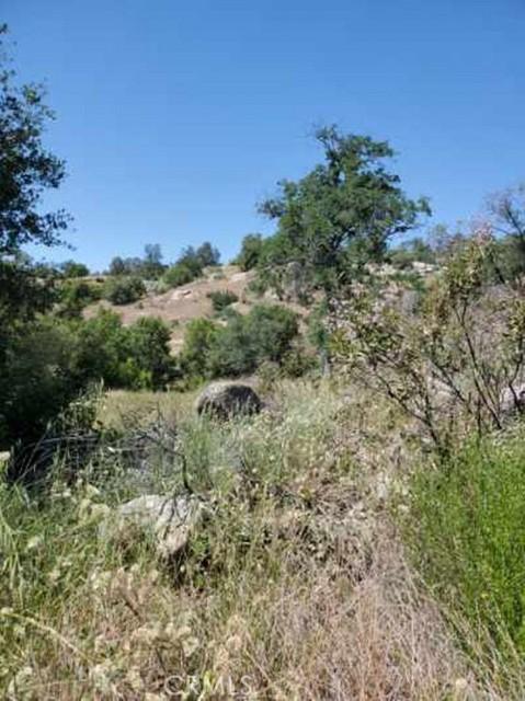 0 Lot 1952 Ranger Circle Drive, Coarsegold CA: http://media.crmls.org/medias/c933522e-d8a1-4446-a817-aaf93bc3d187.jpg