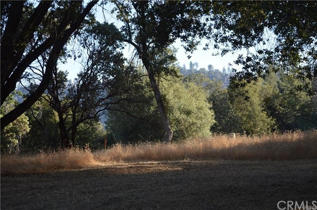 12 Woodcrest Drive Oakhurst, CA 0 - MLS #: FR18115224