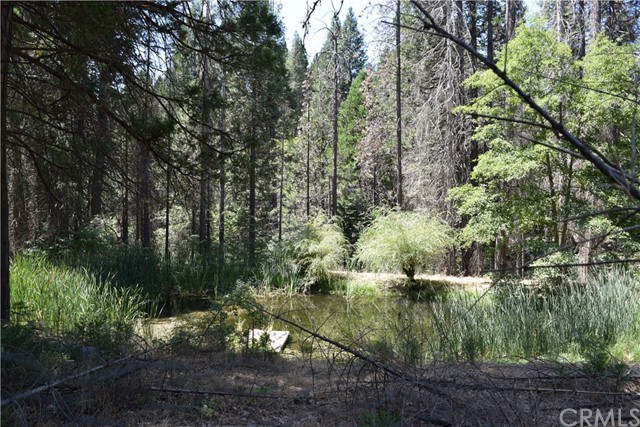 6956 Best Road Mariposa, CA 95338 - MLS #: MP17186079