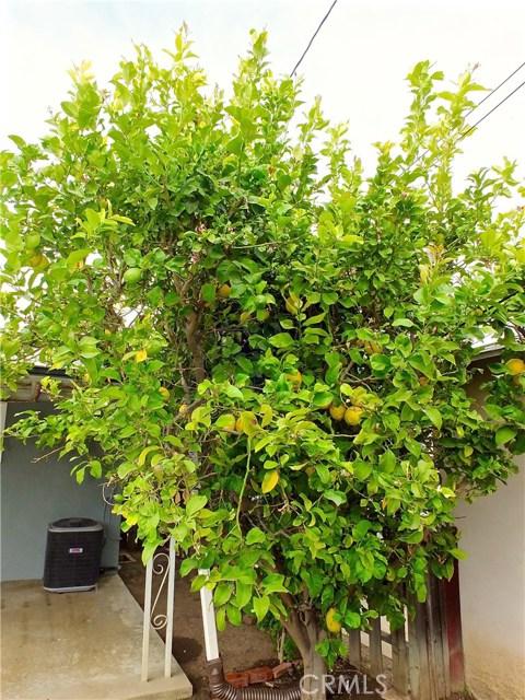 4416 Boyar Av, Long Beach, CA 90807 Photo 40