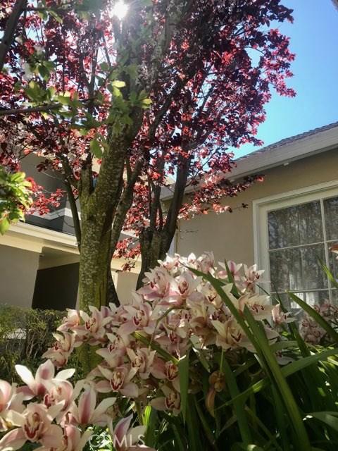 1417 Cortez Avenue, Burlingame CA: http://media.crmls.org/medias/caaa5375-87a7-433c-86f5-6839230419b6.jpg