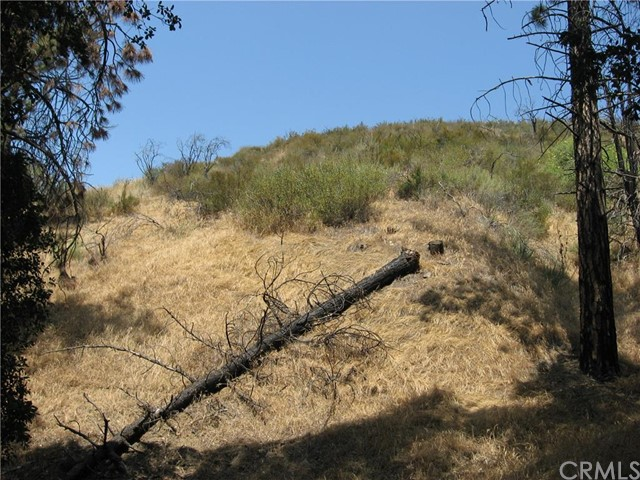 Single Family for Sale at 0 North Trail Kagel Canyon, California United States