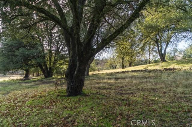 0 Pine Hills Road, Julian CA: http://media.crmls.org/medias/cb3de0f5-57d5-4d6a-9bb3-ec6e4aaf6eaa.jpg
