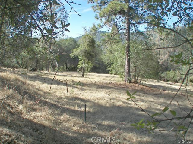 0 Bell Ranch Road, Berry Creek CA: http://media.crmls.org/medias/cc5542c5-a2a3-4da9-a3a8-687326a22c5f.jpg