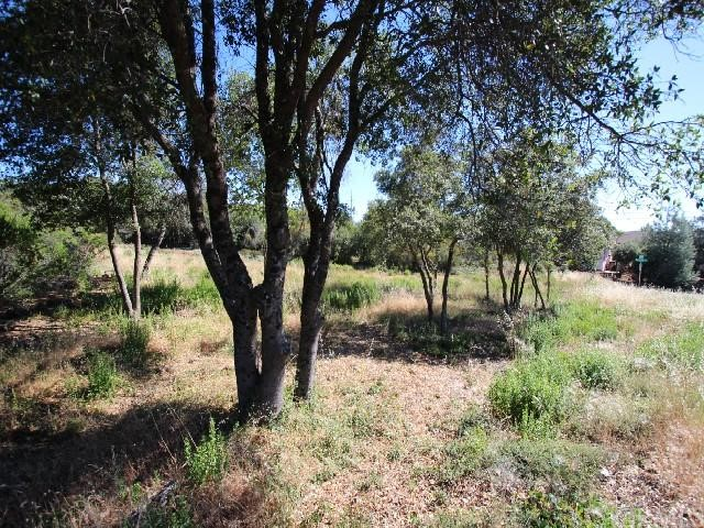 Single Family for Sale at 9500 Chippewa Trail Kelseyville, California 95451 United States