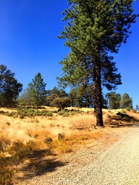 5887 Vineyard Lane, Mariposa CA: http://media.crmls.org/medias/cd56f80f-235d-4302-b0e0-3404fba2ed58.jpg
