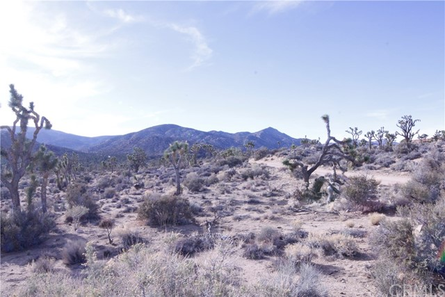 45448 Burns Canyon Road, Pioneertown CA: http://media.crmls.org/medias/cd7da8df-98b3-4cc8-8ec4-6a0ede6b4cc4.jpg