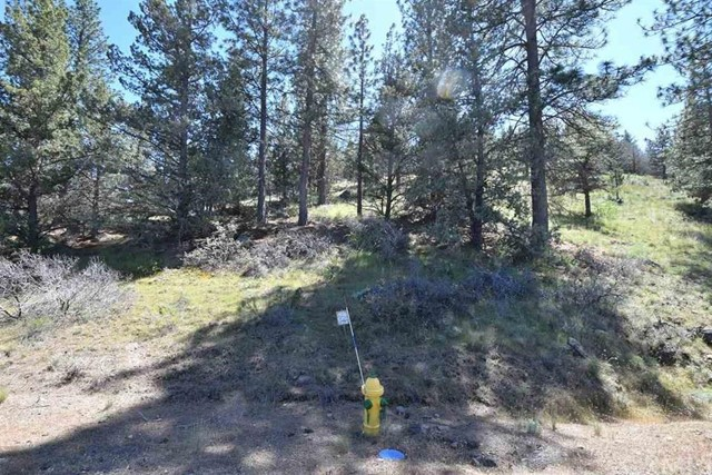 Single Family for Sale at 0 Lot 280 Rainbow Drive Weed, California 96094 United States