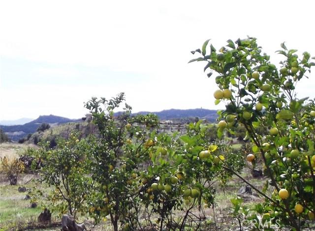 21055 Carancho Rd, Temecula, CA 92590 Photo 16