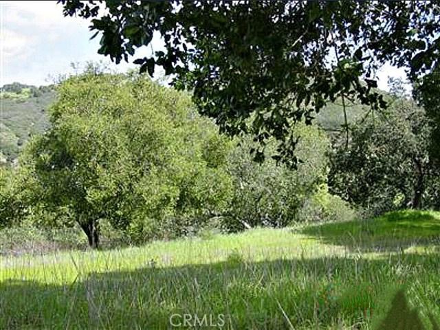 0 San Miguel Road, Atascadero CA: http://media.crmls.org/medias/cf812357-328d-4d6c-9e0c-4745c0d0d316.jpg