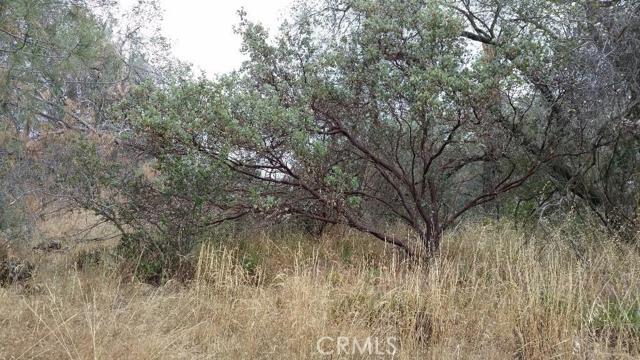 Additional photo for property listing at 0 Limestone Circle  Coarsegold, California 93614 United States