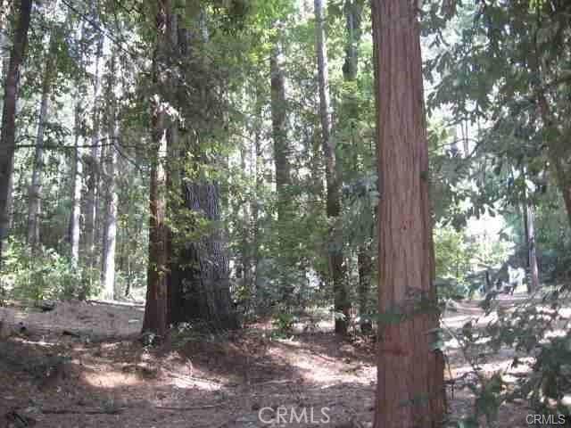 11691 Oroville Quincy Berry Creek, CA 95916 - MLS #: SN18018045