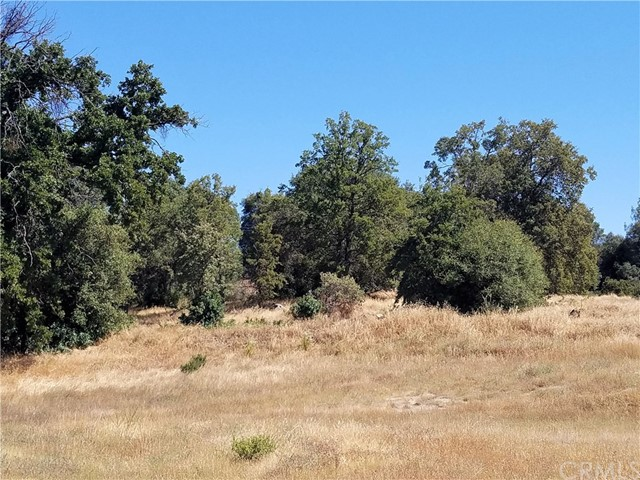 0 Rd 221 North Fork, CA 0 - MLS #: YG17140258