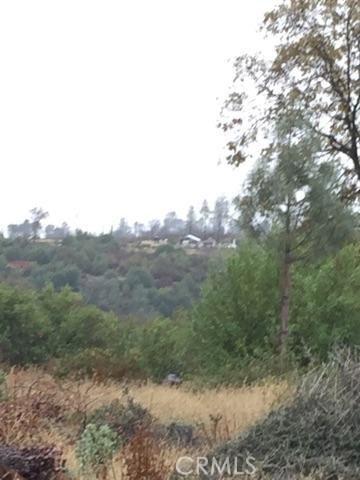 0 Lot 26 Bay Tree Drive, Paradise CA: http://media.crmls.org/medias/d0c0774b-7bae-4282-b727-f88186dc0e73.jpg
