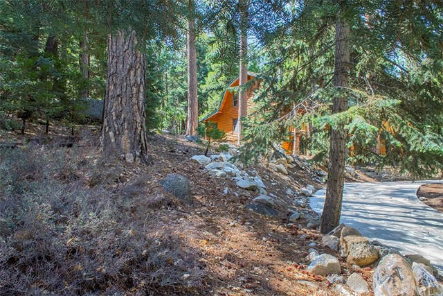 Additional photo for property listing at 24620  Fern Valley Road 24620  Fern Valley Road Idyllwild, California 92549 United States