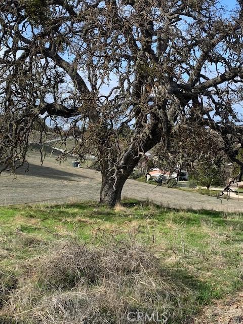 0 Lot 28 Sandy Creek Rd, Paso Robles CA: http://media.crmls.org/medias/d16f9aea-ba26-4ca8-80bc-7f92c973b921.jpg