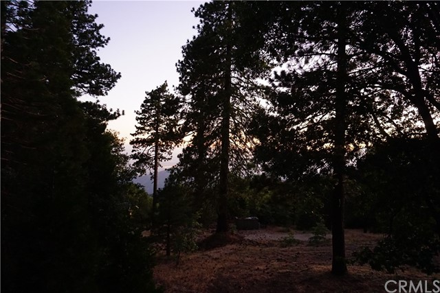 2 Mistletoe Turn Running Springs Area, CA 92382 - MLS #: EV18157226