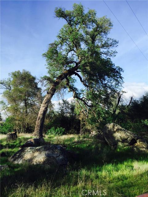39390 Highway 41, Oakhurst CA: http://media.crmls.org/medias/d205577f-5326-44d6-bc07-f78d142d7501.jpg