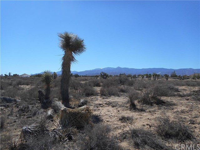 0 Nevada, Phelan CA: http://media.crmls.org/medias/d24bd1c7-e605-467d-b37b-f812e4d6c6db.jpg