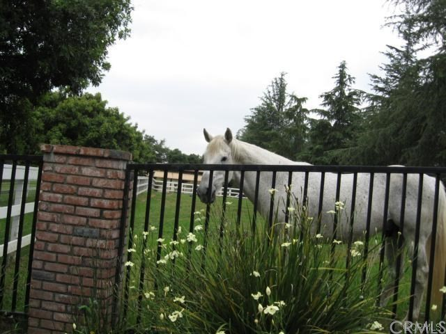 Terreno por un Venta en 190 Sycamore Lane Bradbury, California 91008 Estados Unidos