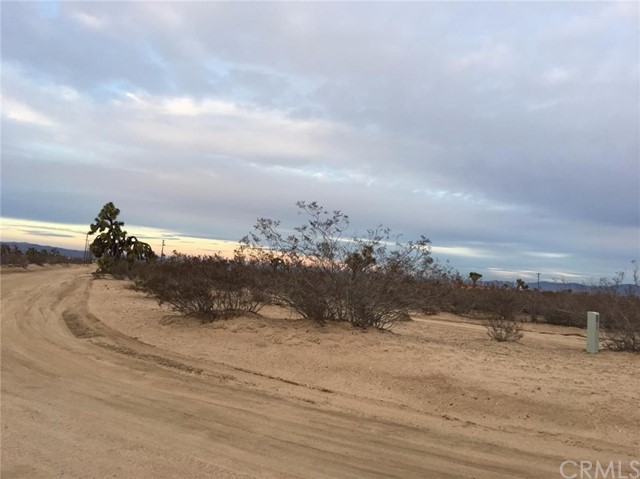 0 Wolf/Nevada Phelan, CA 0 - MLS #: PW17033575