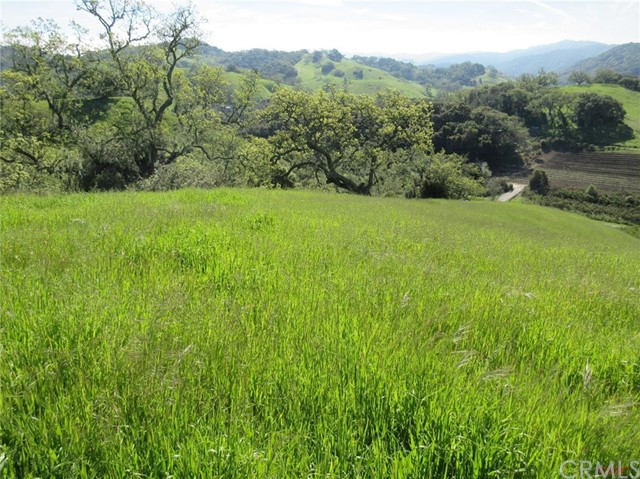 0 Green Valley Road, Templeton CA: http://media.crmls.org/medias/d28d683d-8da9-43a8-9203-f64f5dc0abf9.jpg