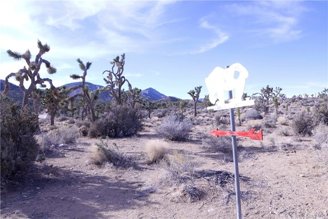 45448 Burns Canyon Road, Pioneertown CA: http://media.crmls.org/medias/d2ff770f-243b-45a6-9cfe-aecc4630c88a.jpg