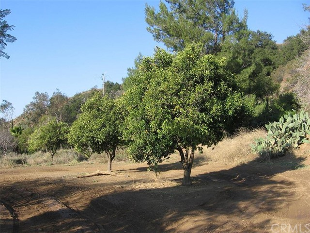 Single Family for Sale at 32633 Trabuco Creek Road Trabuco Canyon, California 92679 United States