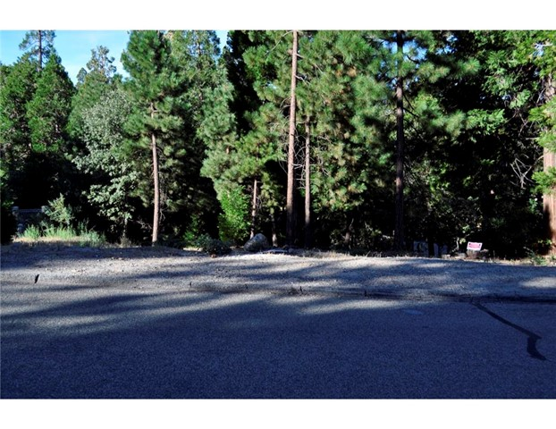 Additional photo for property listing at 0 Bernina Street N  Lake Arrowhead, California 92352 United States