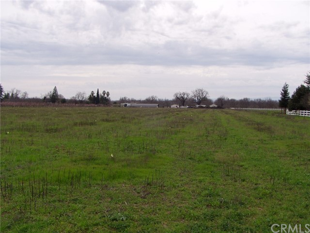 12600 State Highway 99e, Red Bluff CA: http://media.crmls.org/medias/d3354f7c-3e51-4c2c-8e1f-a333273d4a9f.jpg