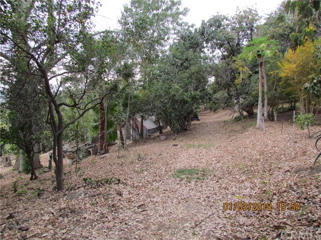 0 Reposado, La Habra Heights CA: http://media.crmls.org/medias/d3b8e023-9340-4081-9737-a90d07310808.jpg