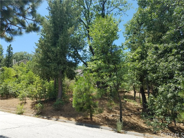 28310 Bern Lane, Lake Arrowhead CA: http://media.crmls.org/medias/d3ee5008-cc6c-4c7c-a741-e1b383b85927.jpg