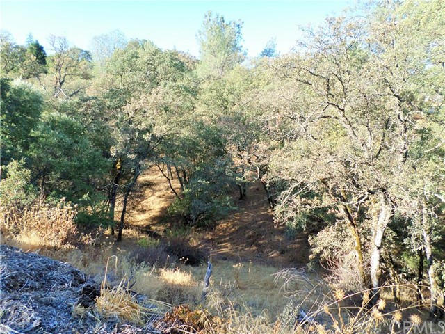 Additional photo for property listing at 1 Ford Lot 25 Oroville, California United States