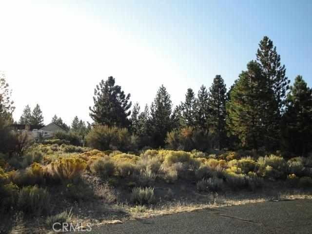 0 Lot 115 Buffalo Road Weed, CA 96094 - MLS #: SN18040903