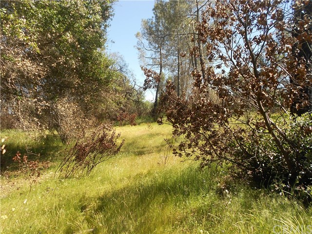 3896 D Hwy 140 Catheys Valley, CA 95306 - MLS #: MC17223098