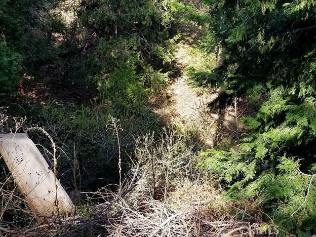 Hook Creek Road