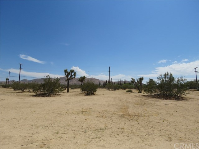 60179 Chollita Road Joshua Tree, CA 92252 - MLS #: JT18177416