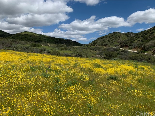 Detail Gallery Image 1 of 1 For 0 Davenport Rd & Summit Knoll, Agua Dulce,  CA 91350 - – Beds | – Baths