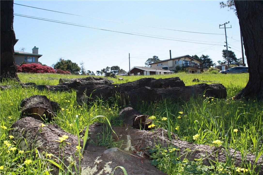 1 Richard Avenue, Cambria CA: http://media.crmls.org/medias/d7d54721-c468-4fa0-b629-8ee8dff8bca0.jpg