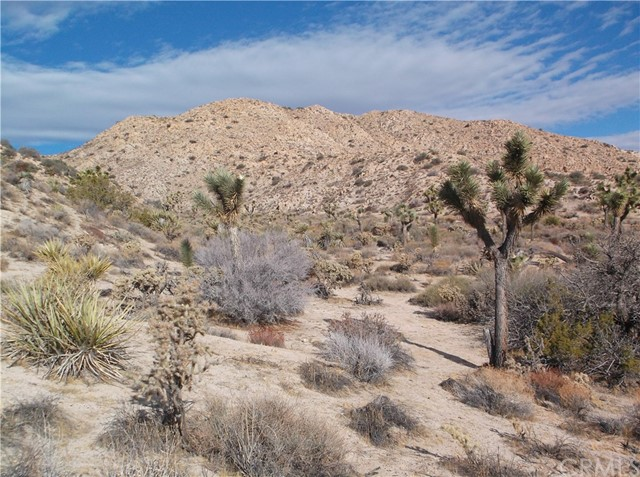 7400 Fairway Drive, Yucca Valley CA: http://media.crmls.org/medias/d8fd13c4-cc3f-44ce-aae2-cf4603605532.jpg