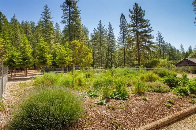 10391 Timber Cove Way, Oroville CA: http://media.crmls.org/medias/d922a777-17a5-464d-bdf0-5817de2c0ac2.jpg