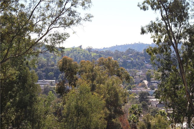 5342 N Highland View Place, Eagle Rock CA: http://media.crmls.org/medias/d98a84d8-54c7-4227-936a-e5dca7944485.jpg
